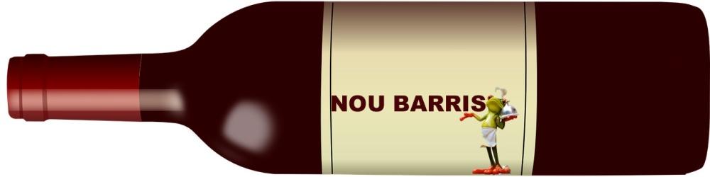 NOU BARRIS copia